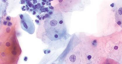 Histology and cytology